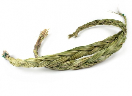 Wholesale Sweetgrass (65cm)