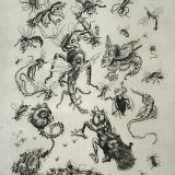 Ko Prange - Insecten